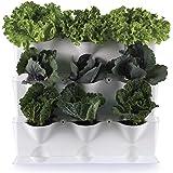 minigarden 1 Juego Vertical para 9 Plantas, Jardín Vertical Modular y Extensible, Colocar en el Suelo o Colgar en la Pared, M