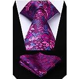 HISDERN Cravatta da Uomo Paisley Floreale Extra Lungo e Fazzoletto 8.5cm Cravatte e Fazzoletti Set Formale Matrimonio(160cm)…