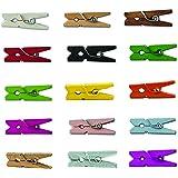 """LWR CRAFTS Mini pinzas de madera para la ropa, 15 colores, 100 por paquete, 1 """", 2,5 cm (todos)"""
