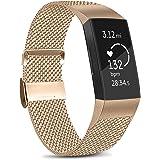 Amzpas Cinturino Compatibile con Fitbit Charge 3/Fitbit Charge 4, Cinturino Regolabile in Acciaio Inox con Chiusura Magnetica