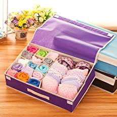 Styleys Multi Compartment Cell Foldable Storage Box/Closet Organizer/Non-Smell Drawer Organizer, Underwear Closet Storage for Socks, Bra, Panty, Tie, Scarf, etc – Color -