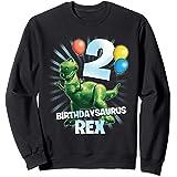 Disney Pixar Toy Story Birthdaysaurus Rex 2nd Birthday Sweatshirt