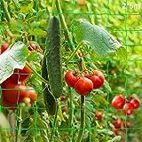 Malla Plantas de Vid,Multiusos Malla,Tomates y Plantas trepadora,Red de Enrejado Jardín,Valla de Cultivo,malla vegetal para f