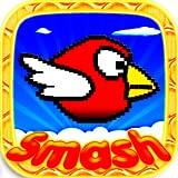 Birds Smash: Free - der coole Kostenlose Spiele für Jungen, Mädchen, Kinder, Alle. Neue Besten Action App gratis