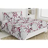 haus & kinder Fall Autumn Leaves Cotton Double Bedsheet King Size with 2 Pillow Covers, 186 TC (Pink)