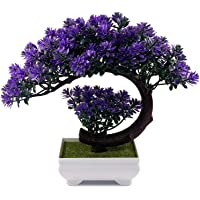 Dekorly Small Artificial Plants Fake Bonsai Tree, Indoor House Plant for Home Office Decor, 9.5 x 8.5 inch