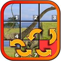 Enfants dinosaure Rex Slide Puzzle 15 - mystique carrés forme réarrangeant jeu de mosaïque approprié pour le développement intelligents enfants âgés