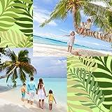 Collage di foto di palme