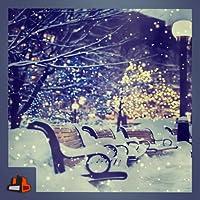 Virtual Snow Scene - Enjoy Multiple Snowy Views