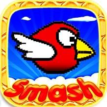Birds Smash: Free Nouveaux Jeu de Gratuit! Meilleurs jeux de garcons, garcon, filles, fille, enfants, enfant, adultes, adulte pour tablette Gratuits