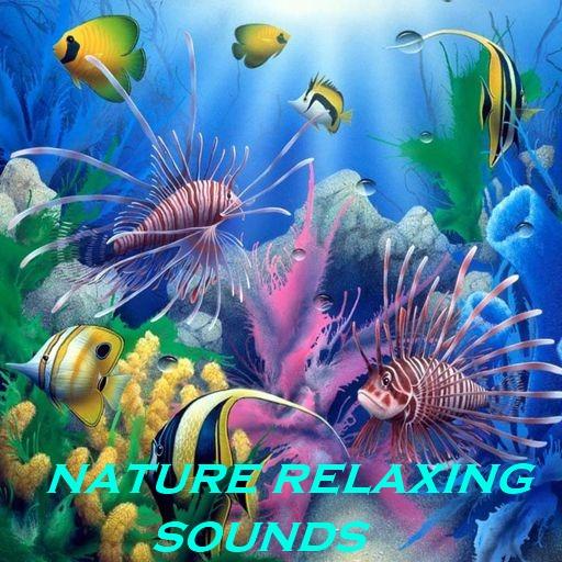 Natur Entspannenden Klängen (Klang-wasserfall)