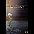 Résilience (Amour)