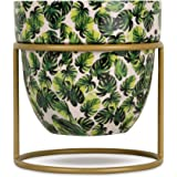 Vudy Plant Stand Mid Century Modern Pot Stand Indoor Stand & Pot, Flower Pot Holder Plants Display pots Stand (Plants not Inc