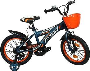 Hollicy Fury 16 Plastic Bicycle, Kids 16-inch (Matt Blue/Orange)