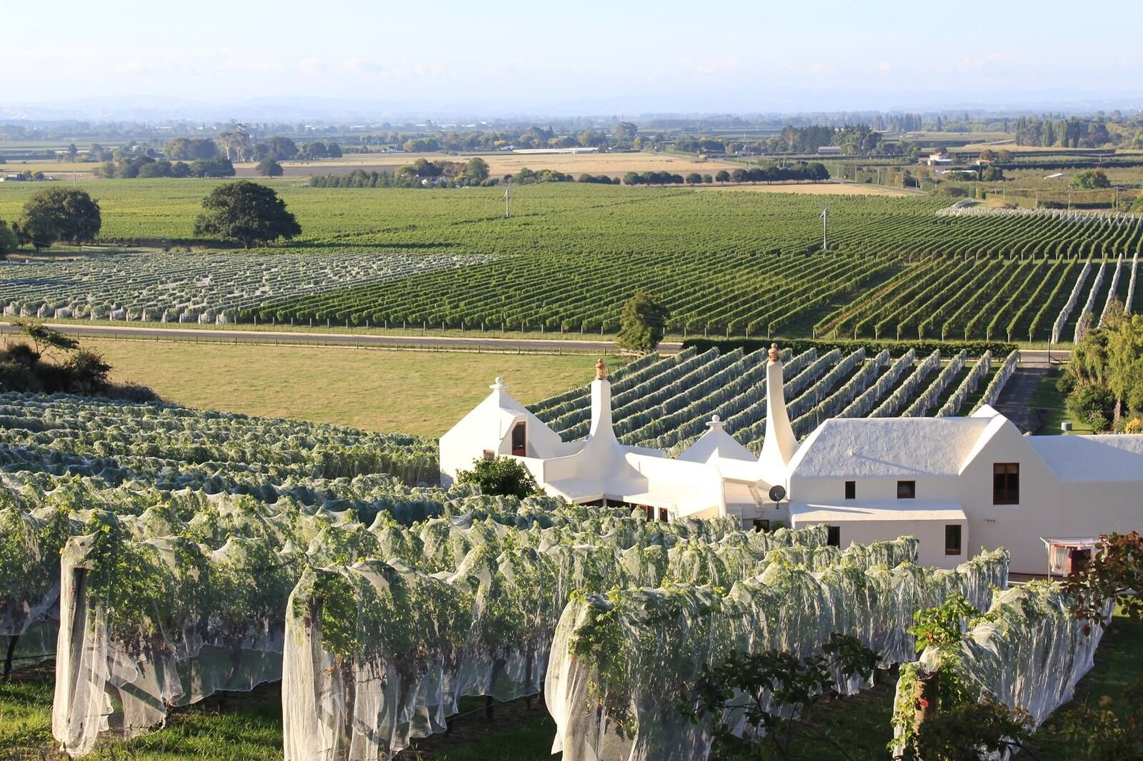 Te-Mata-Elston-Chardonnay-2015-trocken-1-x-075-l