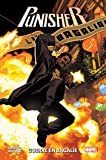 Punisher T02: Guerre en Bagalie
