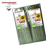 MAHAVIR PERFUMERS® Loban Agarbatti, 1kg(White)