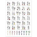 kizibi® XL Grundschrift Poster für Kinder (GS), Grundschule Lernposter DIN A2 mit Übungsblatt, Schreiben Lernen | beliebt im