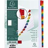 Exacompta - Réf. 4131E - Intercalaires en carte blanche 160g/m2 FSC® avec 31 onglets imprimés numériques de 1 à 31 en couleur