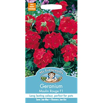Mr. Fothergill's 10961 Geranium Moulin Rouge F1 Flower Seeds