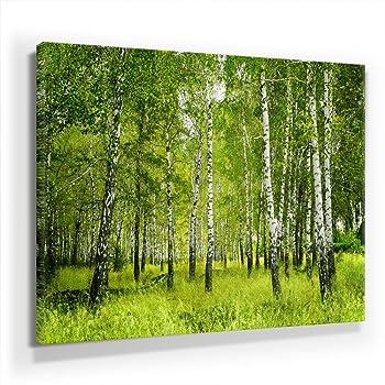 Amazon.de: Birkenwald Format: 100x70 cm auf Leinwand, XXL
