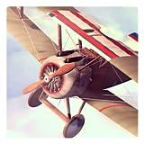 Flight Theory