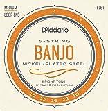 D'Addario EJ61 Jeu de cordes en nickel pour Banjo 5 cordes 10-23 Medium