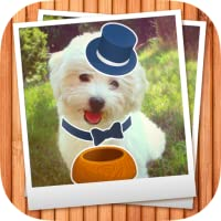 My Pet Photo Booth