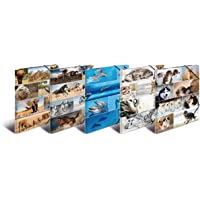 HERMA 19347 Sammelmappe DIN A3 Tiere 10er Set aus stabilem Karton mit bedruckten Innenklappen, Gummizugmappe, Eckspanner-Mappe, 10 Zeichenmappe für Kinder