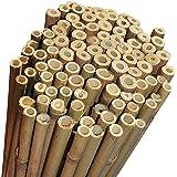 N° 25 Canne Bamboo Bambù cm 180 x Ø mm 24-26