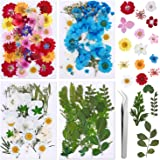 134 Stuks Echte Gedroogde Geperste Bloemen, Natuurlijke Bloemen Geperste Bloem Blad Voor DIY Hars Sieraden Maken Bloemen Nail