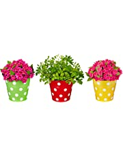 Amazon Brand - Solimo Corrosion Resistant Hanging Planter - Set of 3 (Round - Green, Yellow, Red)