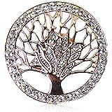 Glamexx24 Spilla Gioielli Magnete incanta Buttone con Strass Pietra Brillanti per Vestiti Sciarpe Ponchos 43000