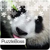 Baby Bear Jigsaw Puzzles