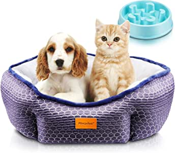 morpilot Pet Bed for Cats and Small Medium Dogs, Comfortable Puppy Dog Bed with Round Detachable Soft Cushion for Two Sides Use and Machine Washable, Gift Slow Eating Bowl (Medium: 60 * 60 * 18cm)