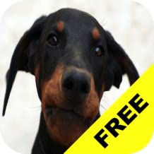 Baby Discover Dogs FREE