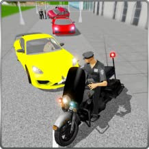 Miami Police Chase Criminals
