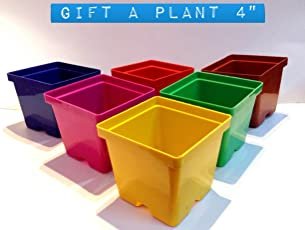 Malhotra Plastic 110022 Plastic Gift Pot Set (Multicolored, 8-Pieces)