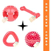 Goofy Tails Rubber Dog Toys Combo - 4 Toys Flavoured Bone, Hole Ball, Spike Ball and Trio Ring Dog Chew Toy (Red, Large)