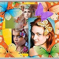 Schmetterlings-Foto-Collage