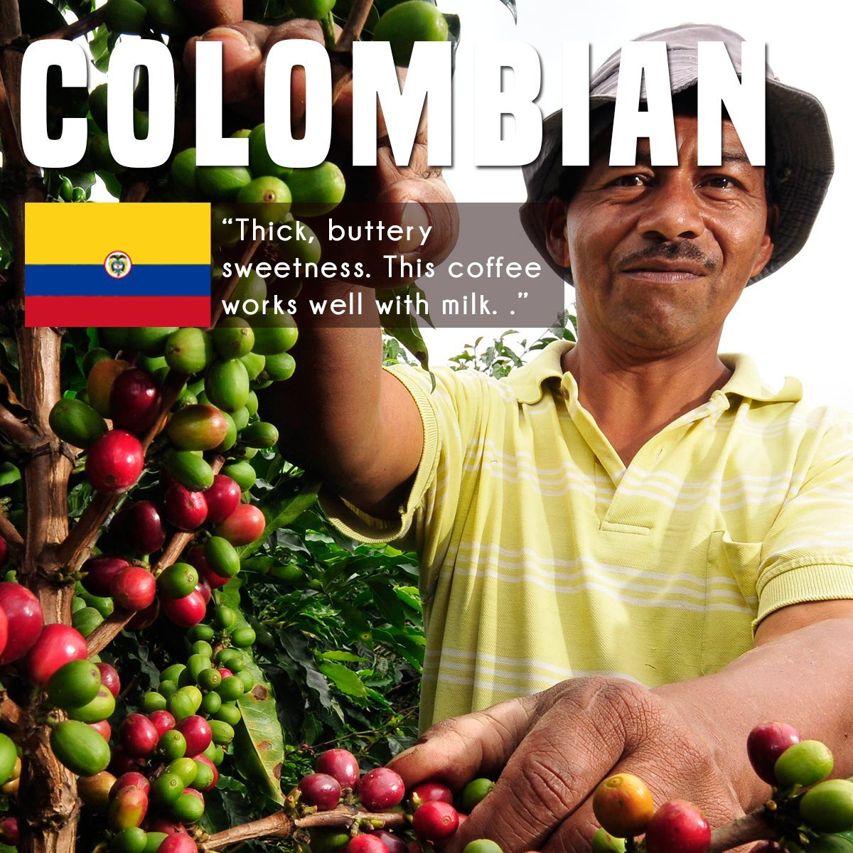 Colombian-Green-Coffee-Beans-100-Arabica-Speciality-Green-Coffee-Beans-From-Colombia-For-Home-Roasting