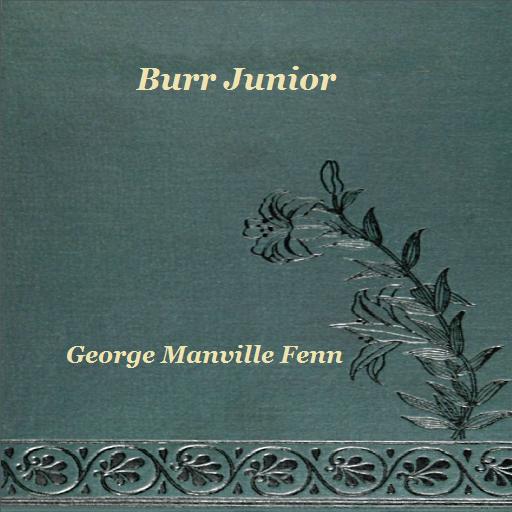 Burr (Burr Junior)