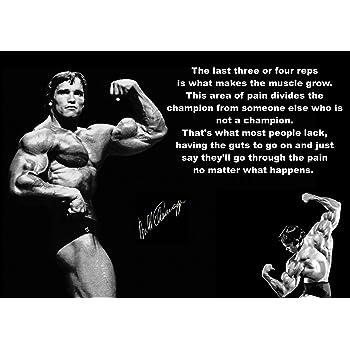 A2 A1 A3 A4 sizes Arnold Schwarzenegger Bodybuilding Conquer Large Poster