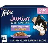 FELIX Zo goed als het eruit ziet Junior kittenvoer nat in gelei, sortenmix, verpakking van 6 (6 x 12 zakken à 85 g)