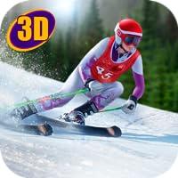 Ski Mountain Racing Tournament
