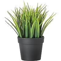 Ikea Artificial Wheat Grass Plant with Plastic Pot (Multicolour)