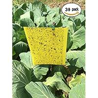 Ndier 30 Stück doppelseitige klebrige Insektenfallen, klebrige Fallen, gelbe klebrige Papiere für weiße Fliegen, Blattläuse, Blatt Bergmann, Motten und Pilz-Mücken