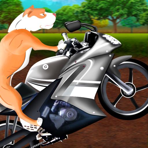 Rollwildhund-Motorrad-Rennen: die schlecht bis auf die Knochen Abenteuer - Gratis-Edition - Abenteuer Motorrad-helm