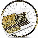"Kit Pegatinas Bicicleta Stickers LLANTA Rim Progress DYN 29"" MTB BTT B"