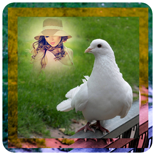 Dove Photo Frame (Dove Frame)